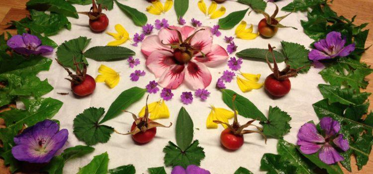 Blumenmandalas (Sommerferien)